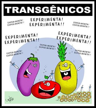 transgenicos.jpg